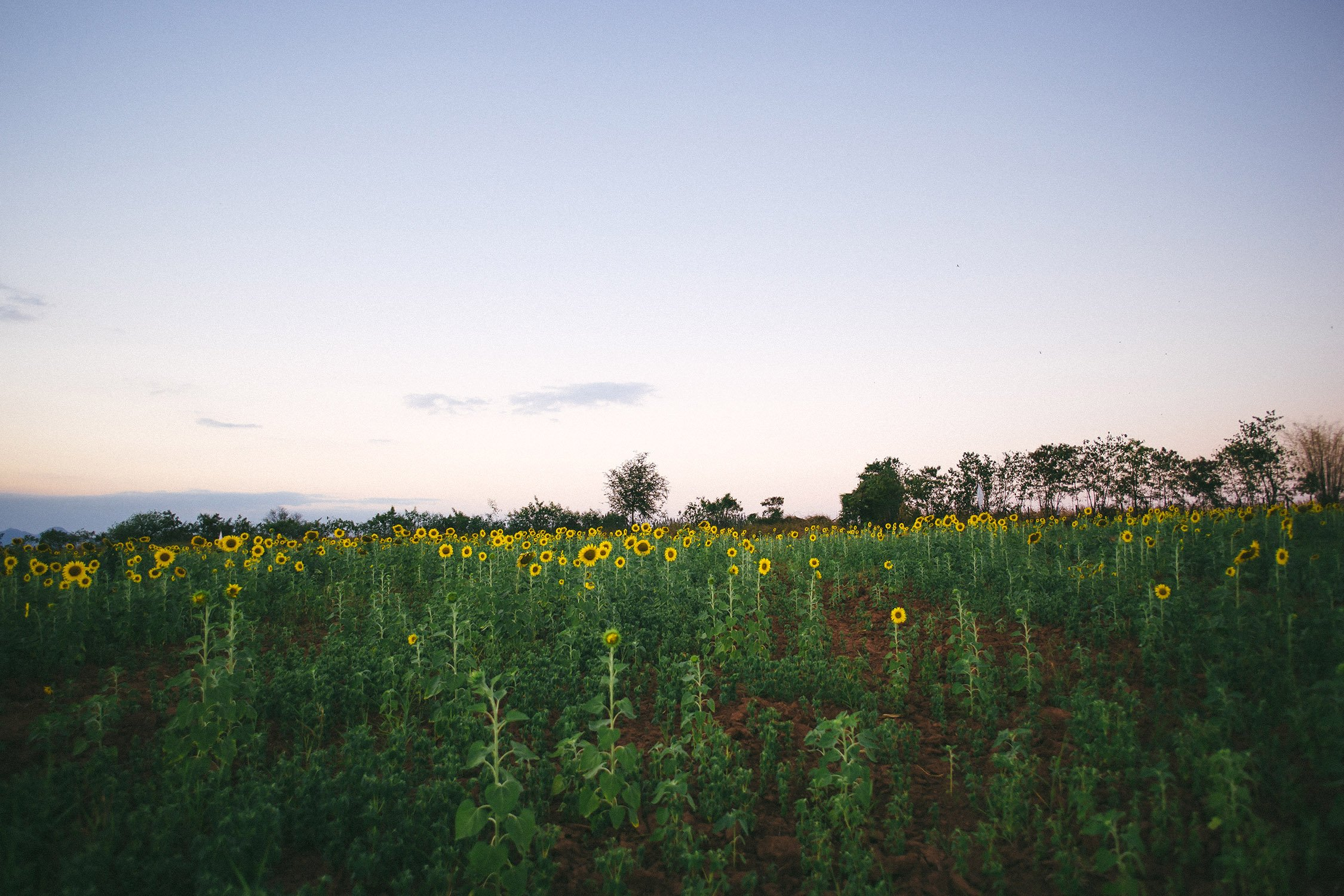 Emma Tsui Travel Photography